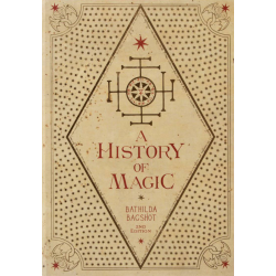 A History of Magic Journal
