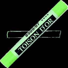 Pastel Toison Verde permanente