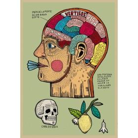 AP Mapa de la menta de la...