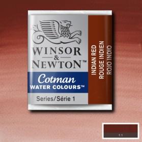 W&N 317 Indian Red pastilla