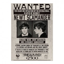 Poster Newt Scamander Wanted