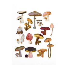 JW Mushroom