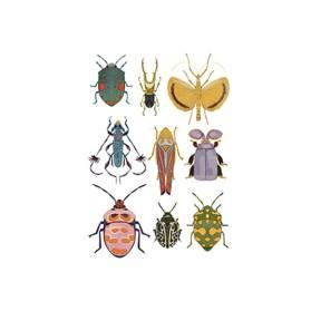 JW Escarabajos Postal
