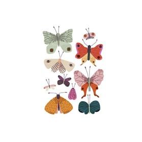 JW Butterfly Postal