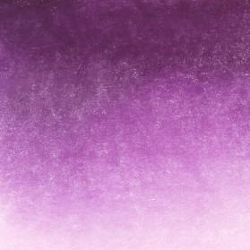 31 Violet rose White Nights...