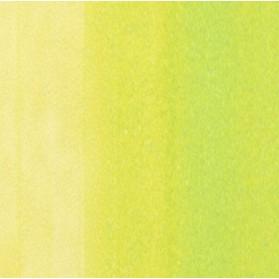 Copic Sketch YG01 Green Bice