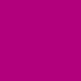 Tombow 755 Rubine Red