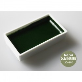 Gansai Tambi 54 Olive Green