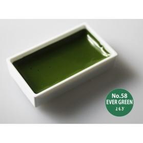 Gansai Tambi 58 Ever Green